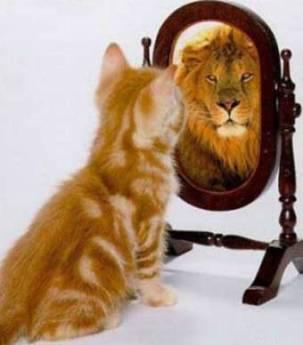 Golpe a la arrogancia - Reflexión Tu Vida es Bella