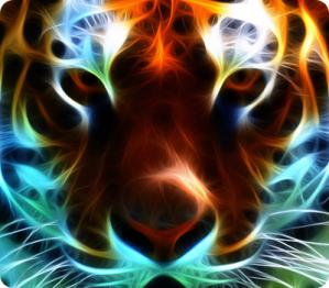 Tu Vida es Bella - no le hagas cosquillas al Tigre