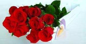 Tu Vida es Bella - Ramo de Flores